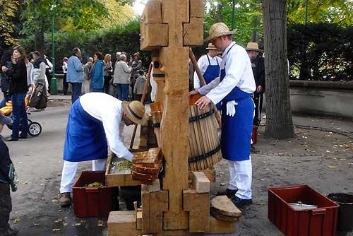 В Чехии стартует ноябрьский праздник молодого вина. Первый этап превращения винограда в вино  Фото: Александра Кириченко  6 ноября 2009 года