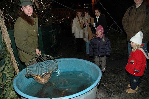 В Праге началась продажа живых рождественских карпов. Продажа живых карпов  Фото: Portál hlavního města Prahy  18 декабря 2009 года