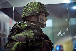Вацлав Клаус осудил обязательную вакцинацию солдат против гриппа.  Вацлав Клаус высказался против принудительной вакцинации солдат.  Фото: Василий Мазный.  27 января 2010