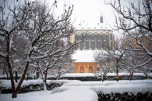 Ученый: Следующие зимы будут не менее холодными и снежными, чем эта. Францисканский сад в Праге в январе 2010 года  Фото: Василий Мазный  11 февраля 2010