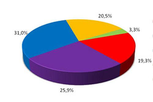 Чехи видят дискриминацию женщин в политике, но квот для них не хотят. Чехи признают засилье мужчин в политике социальной проблемой. Инфографика SANEP  12 апреля 2010