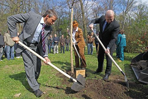 Чехия отметила День Земли лекциями и субботниками. Мэр Праги Павел Бэм сажает липы в парке Стромовка. Фото пресс-службы пражского магистрата  22 апреля 2010