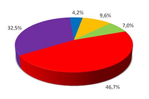 Чехи хотят прямую демократию: референдумы и выборы президента. Чехи хотят более активно участвовать в политической жизни страны. Инфографика SANEP  4 июля 2010