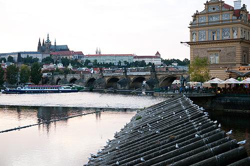 Миллионный штраф за «неправильный» ремонт Карлова моста отменили. Ремонт Карлова моста идет уже более двух лет  Фото: Василий Мазный  9 июля 2010 года