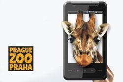 """Пражский зоопарк предлагает бесплатные путеводители для мобильных телефонов. Желающие могут бесплатно скачать на свои мобильные телефоны путеводитель – приложение """"Знакомьтесь!""""  20 октября 2010"""