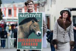 Пражский зоопарк отмечает 80-летие в стиле 30-х годов прошлого века. Пражский зоопарк отметит юбилей в стиле ретро. Фото пресс-службы пражского зоопарка  27 сентября 2011