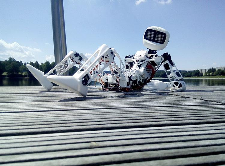 Чешский робот Матильда успешно завершил путешествие автостопом. Робот Матильда. Фото со страницы Facebook  8 ноября 2018 года