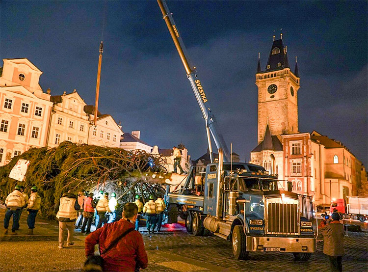 Главная елка Праги прибыла на Староместскую площадь под покровом ночи. Ель прибыла на Староместскую площадь. Фото из фейсбука Trhy Praha/Prague Markets  27 ноября 2018 года