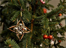 Чехи рассказали, как и зачем будут праздновать Рождество. Елку к Рождеству нарядят более 90% жителей Чехии  Фото: Národní památkový ústav  28 ноября 2018