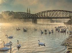 Пражский мост-памятник заменят современной копией. Железнодорожный мост  Фото: Prague City Tourism  29 ноября 2018