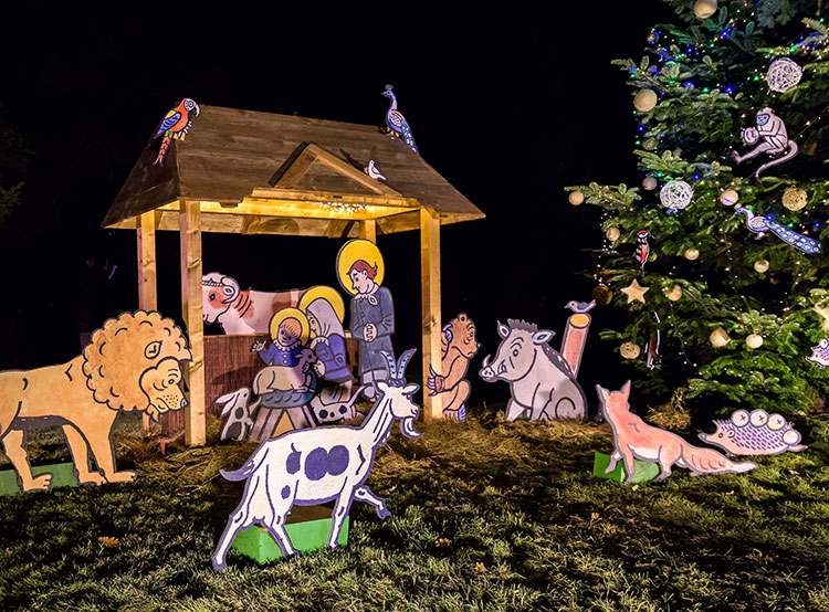 Зоопарк Праги зовет на открытие рождественского сезона и крестины малой панды. Рождественская елка и вертеп в зоопарки Праги. Фото: Petr Hamerník, Zoo Praha  29 ноября 2018 года