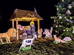Зоопарк Праги зовет на открытие рождественского сезона и крестины малой панды. Рождественская елка и вертеп в зоопарки Праги. Фото: Petr Hamerník, Zoo Praha  29 ноября 2018