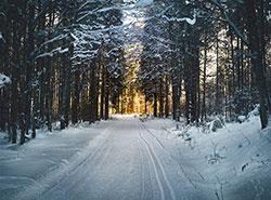Метеорологи обнародовали предварительный прогноз погоды на Рождество и Новый год в Чехии. Photo by Simon Matzinger from Pexels  8 декабря 2018