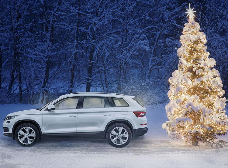 Škoda Auto показала, как правильно и безопасно перевозить рождественскую елку. Видео. Фото пресс-службы Škoda Auto  11 декабря 2018 года