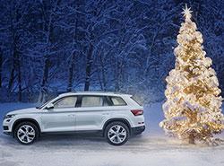 Škoda Auto показала, как правильно и безопасно перевозить рождественскую елку. Видео. Фото пресс-службы Škoda Auto  11 декабря 2018