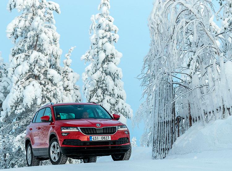 Продажи автомобилей Škoda в России за год выросли на 30%. Škoda Karoq. Фото пресс-службы компании  13 декабря 2018 года