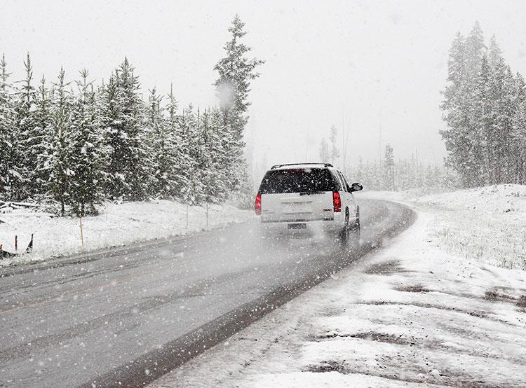 Чешка высадила болтливого мужа из машины в 100 км от дома. Photo by Chris Peeters from Pexels  4 января 2019 года