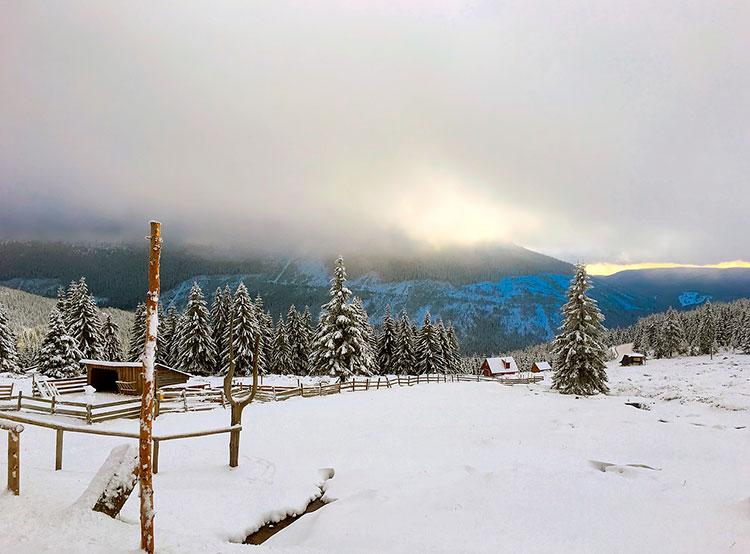 Минимальная температура в Чехии в ночь на 19 января составила -31,3°C. Морозный день в Чехии. Фото pixabay.com  19 января 2019 года