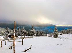 Минимальная температура в Чехии в ночь на 19 января составила -31,3°C.  Морозный день в Чехии. Фото pixabay.com.  19 января 2019
