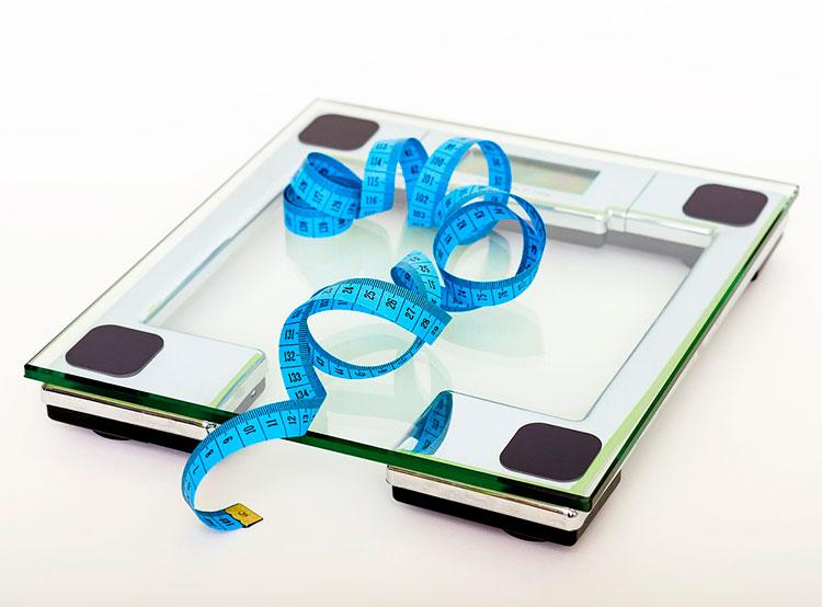 54% жителей Чехии недовольны своим весом. 68% жителей Чехии разочаровались в диетах. Фото Pixabay.com  31 января 2019 года