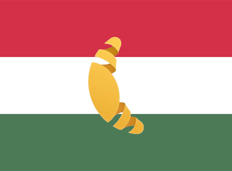 Интернет-магазин продуктов Rohlik.cz выйдет на рынок Венгрии. Rohlík начнет доставлять продукты в Будапеште  Фото: коллаж Utro.cz  16 февраля 2019