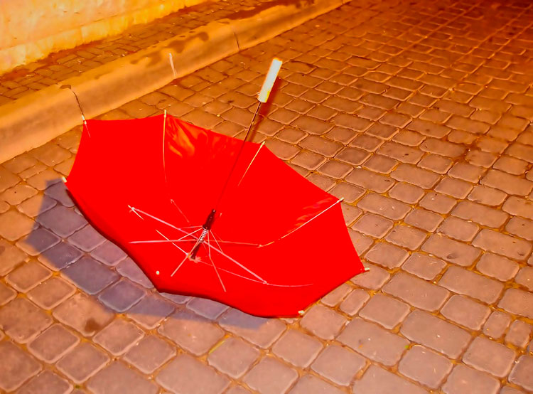 Чехию ждет ветер скоростью до 90 километров в час. В Праге будет ветрено. Image by PublicDomainPictures on Pixabay  3 марта 2019 года