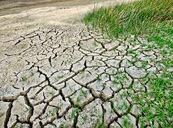 Июлю-2019 не удалось побить в Чехии температурный рекорд.  Июль в Чехии был не таким жарким, как показалось. Фото Jody Davis from Pixabay .  6 августа 2019