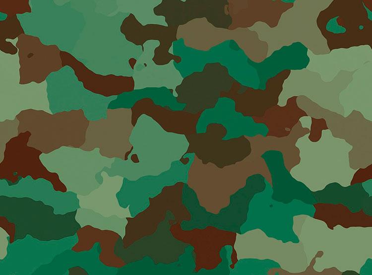 В университете Либерца создали для армии камуфляж-хамелеон. В Либерце создали особый камуфляж  19 августа 2019