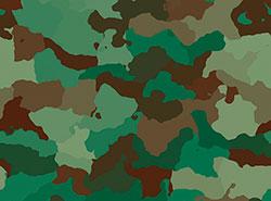 В университете Либерца создали для армии камуфляж-хамелеон.  В Либерце создали особый камуфляж.  19 августа 2019