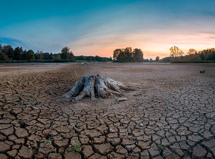 Ученые предсказали сокращение ВВП Чехии на 0,9-1,6% из-за засухи. В Чехии сохраняется засуха. Изображение Sven Lachmann с сайта Pixabay   20 августа 2019