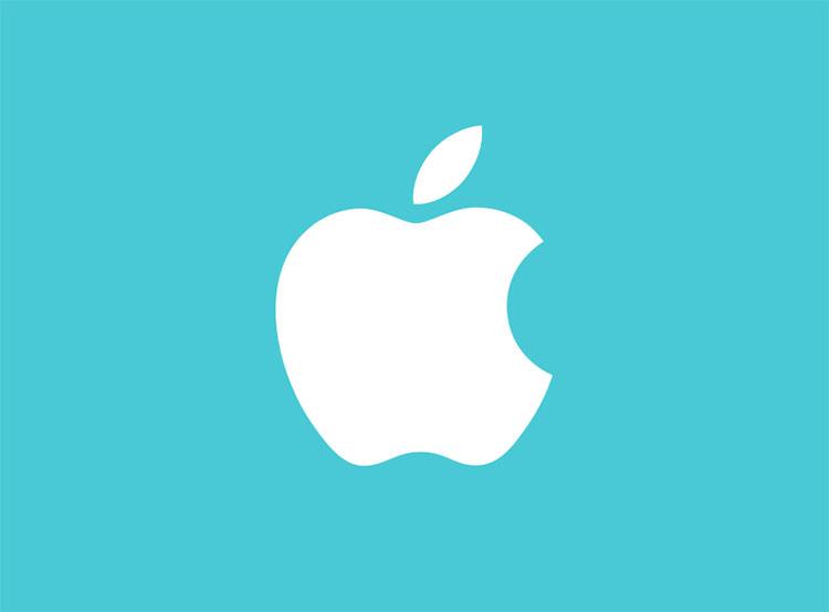 Чешские таможенники обнаружили более 4 тысяч поддельных аксессуаров Apple. Логотип Apple  13 сентября 2019 года