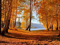 Теплая погода в Чехии продержится еще как минимум неделю.  Осень в Чехии продолжит радовать. Image by Larisa Koshkina from Pixabay .  19 октября 2019